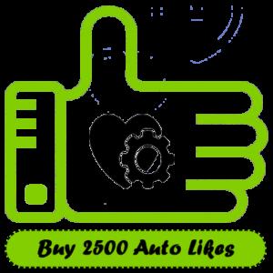 Buy 2500 Auto Instagram Likes